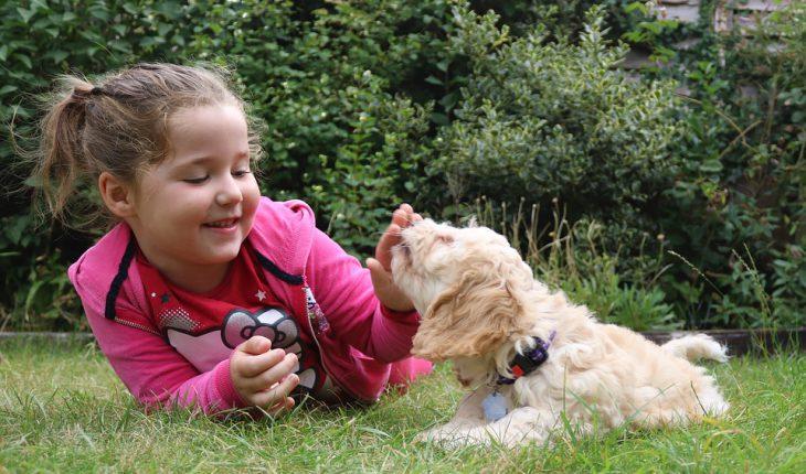 Najbolji psi za decu – top 15 rasa koje su najbolji izbor